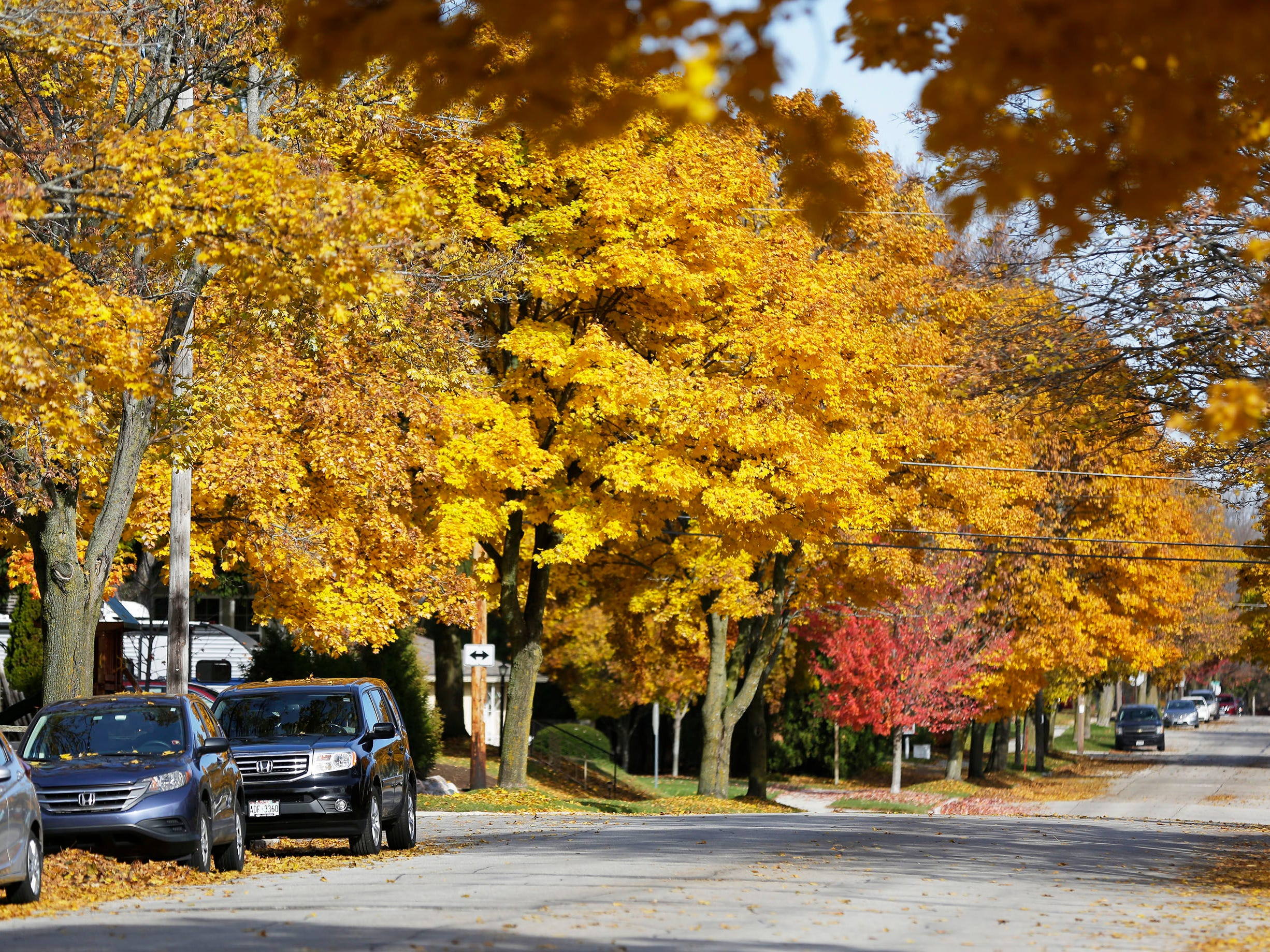 A view of fall color down North 4th Street, Wednesday, October 31, 2018, in Sheboygan, Wis.
