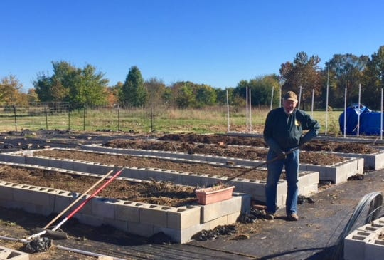 Howard Schwartz gathers some of the last produce of the season from the Temple Israel community garden. The garden, which features raised beds over about a quarter of an acre, has provided more than 3,700 pounds of produce this year, most of it donated to Ozarks Food Harvest.