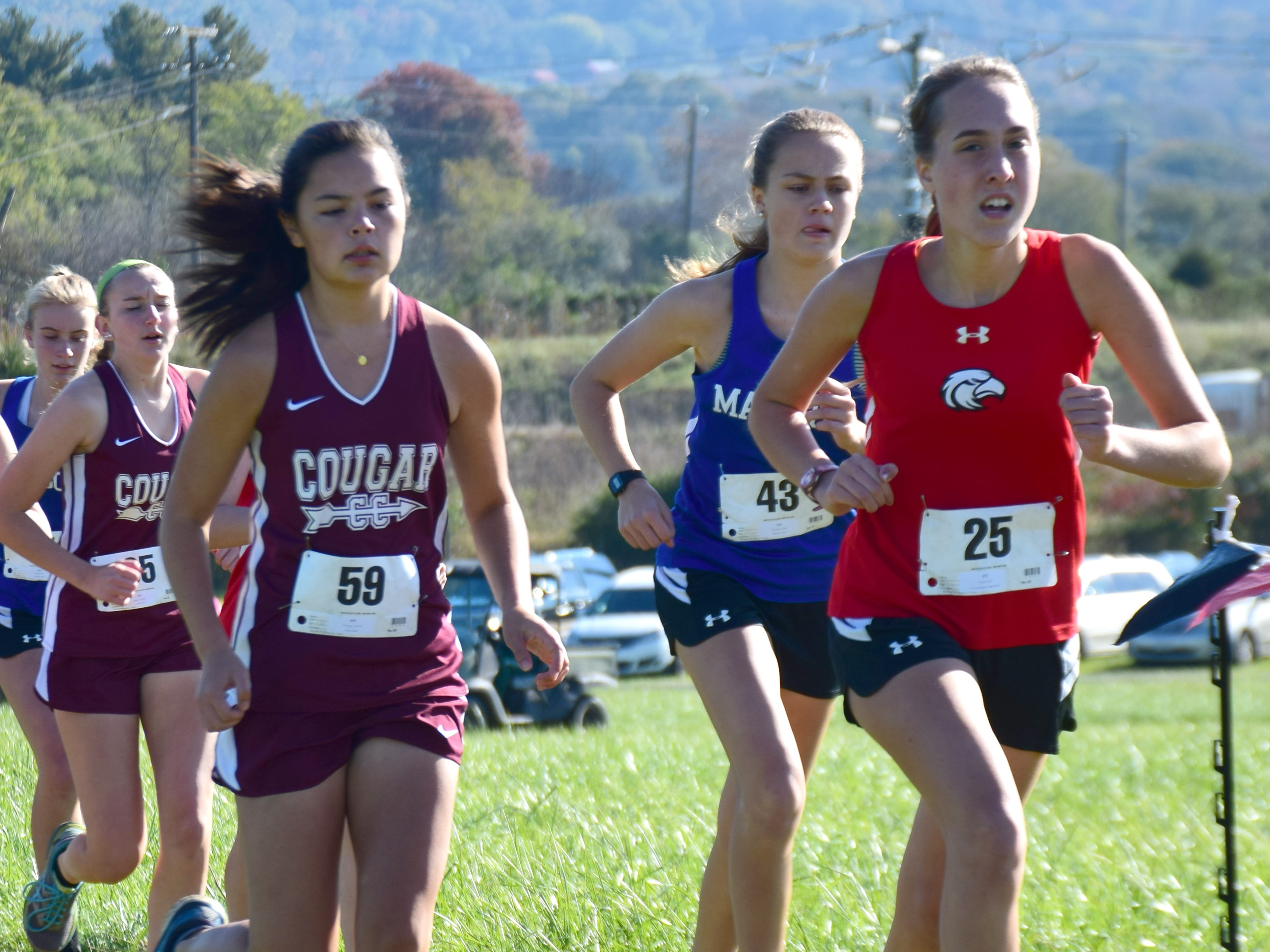 Stuarts Draft's Caroline Cheung, left, competes in the girls race at the VHSL Class 2, Region B Cross Country Championships on Tuesday, Oct. 30, 2018, at New Market Battlefield Park in New Market, Va.