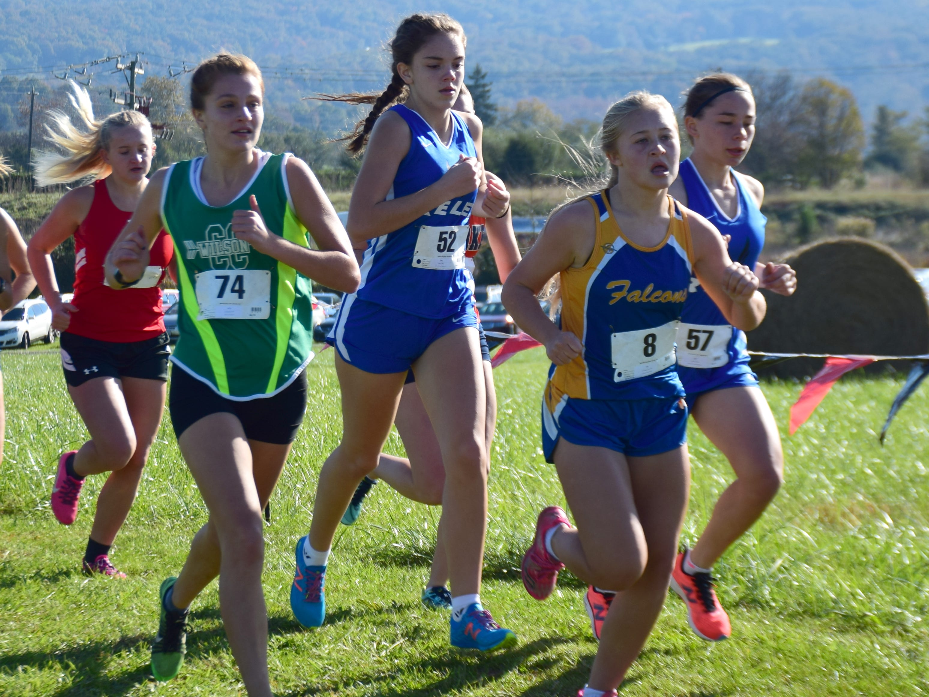 Wilson Memorial's Chloe Surratt, left, and Robert E. Lee's Mary Jones, center, and Olivia Yurish, right, compete in the girls race at the VHSL Class 2, Region B Cross Country Championships on Tuesday, Oct. 30, 2018, at New Market Battlefield Park in New Market, Va.