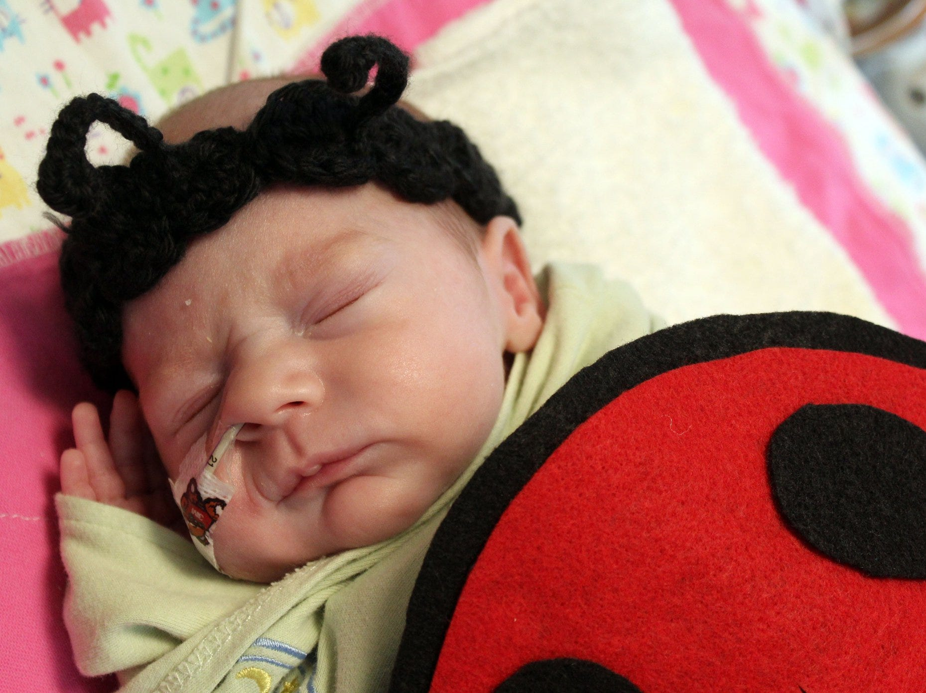 Brooklyn Opsahl was born Oct. 7. Babies in the Neonatal Intensive Care Unit sported handmade costumes and crocheted hats, donated by volunteers with the March of Dimes on Wednesday, Oct. 31, 2018 at St. Cloud Hospital.