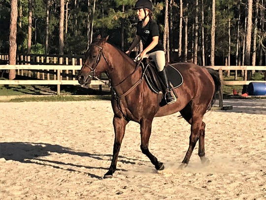 As volunteers gain experience and with staff supervision, volunteers are also allowed to ride horses based on their ability. Gaby is riding her own horse here.