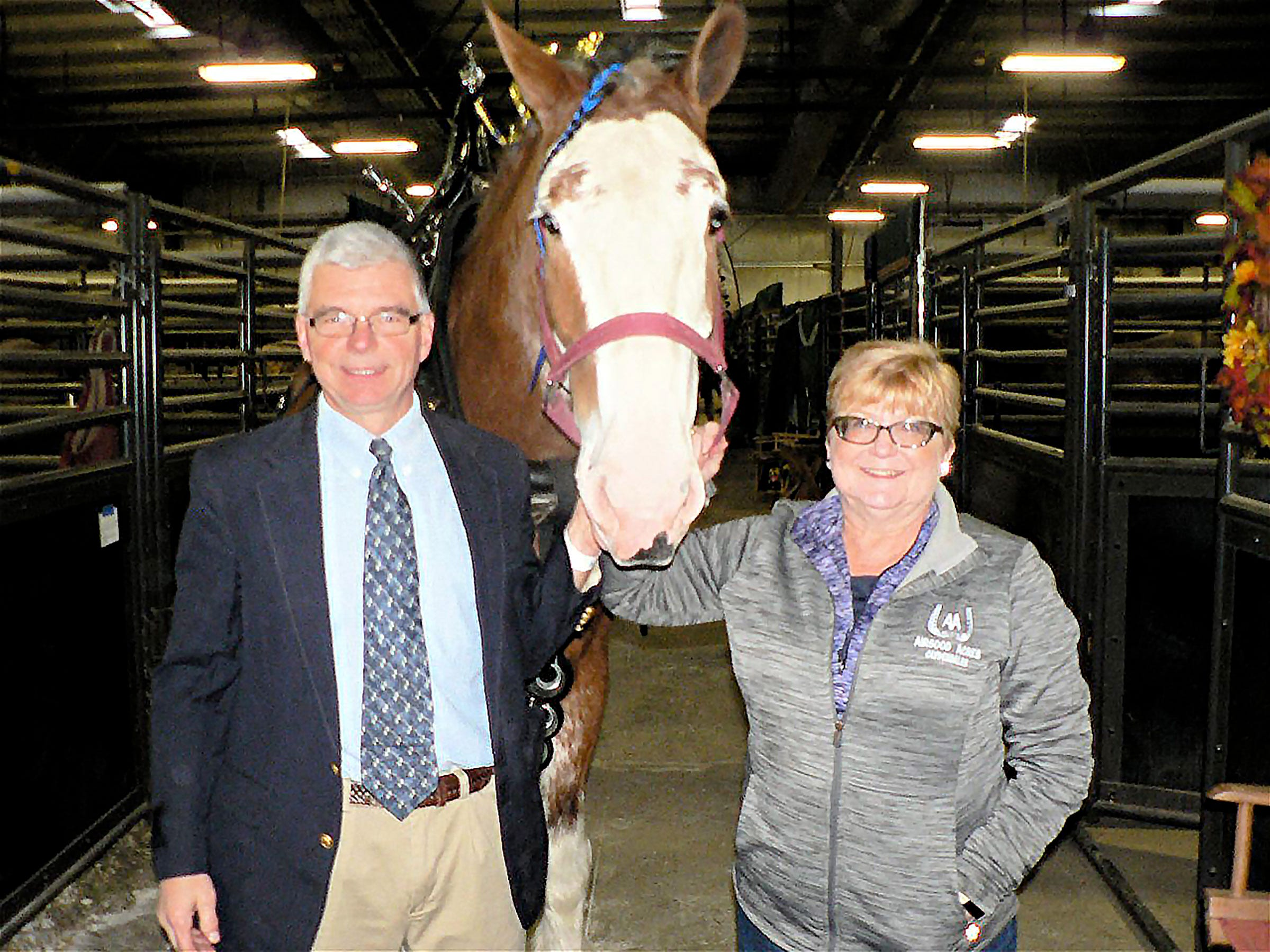Ken and Sonja Airgood, Marshall showed two horses in cart classes.