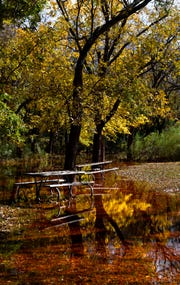 Fall colors are reflected the water beneath picnic tables at Abilene State Park Thursday. Water is still draining out of the park, which had been closed due to runoff from heavy rains, but reopened Thursday. Only about 30 percent of the park is accessible at this time.