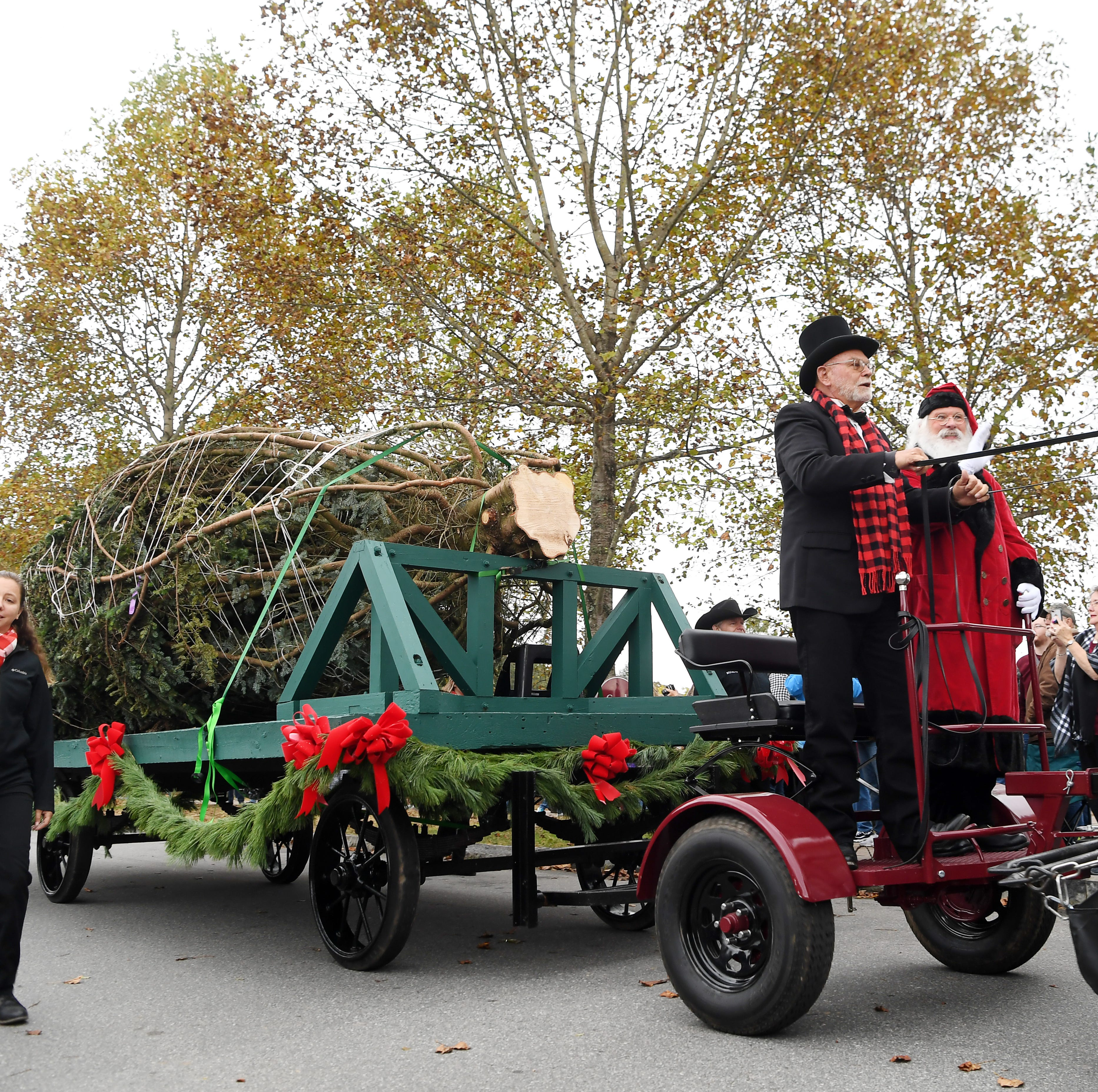 Answer Man: Biltmore Estate's Christmas tree use sustainable? Pond Road fix in sight?