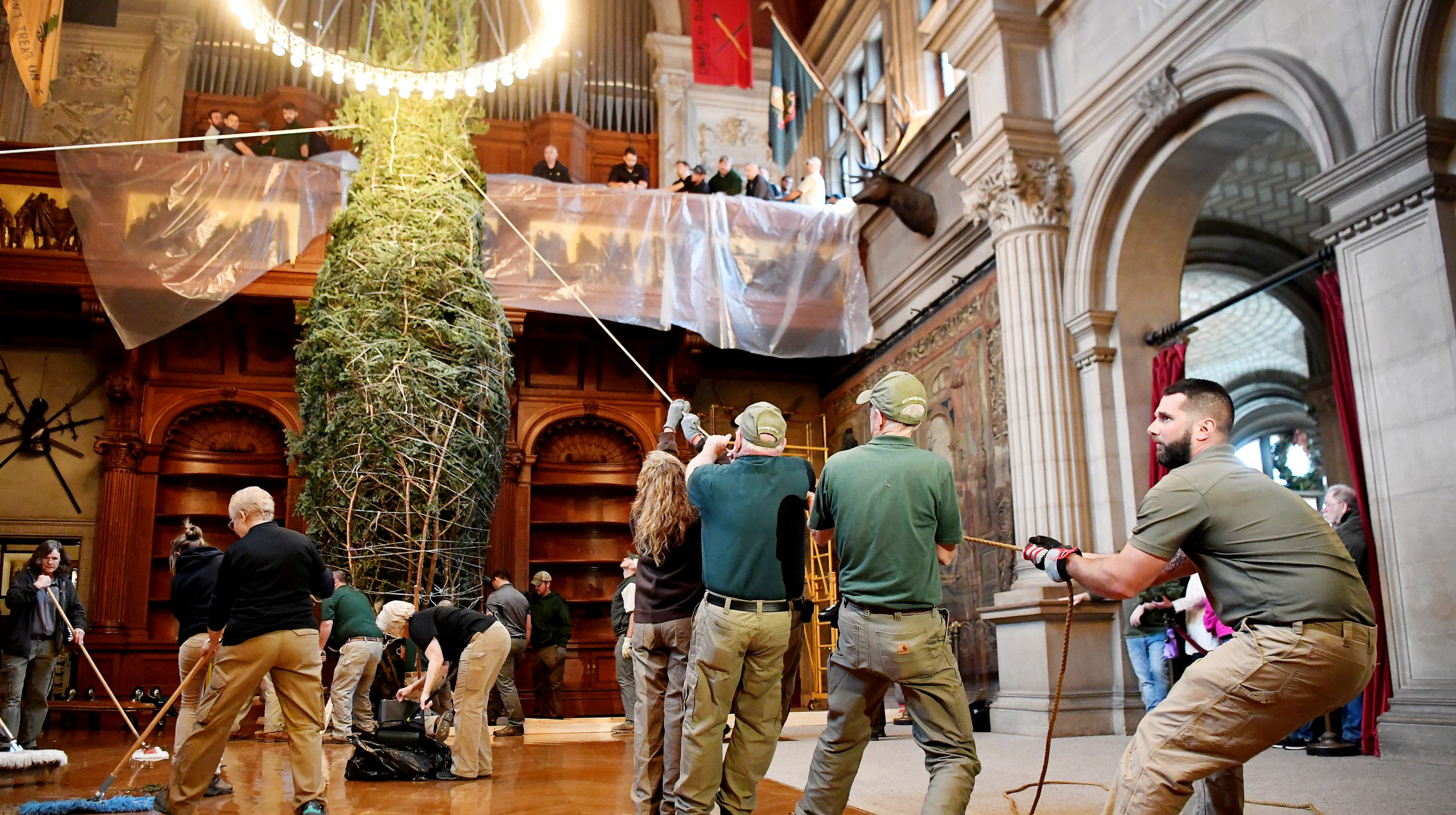 A tree grows in Biltmore: Christmas magic infuses a 35-foot Fraser fir