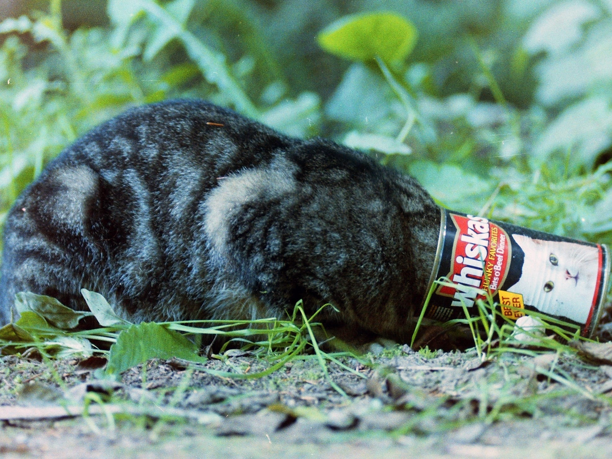 10/11/91
