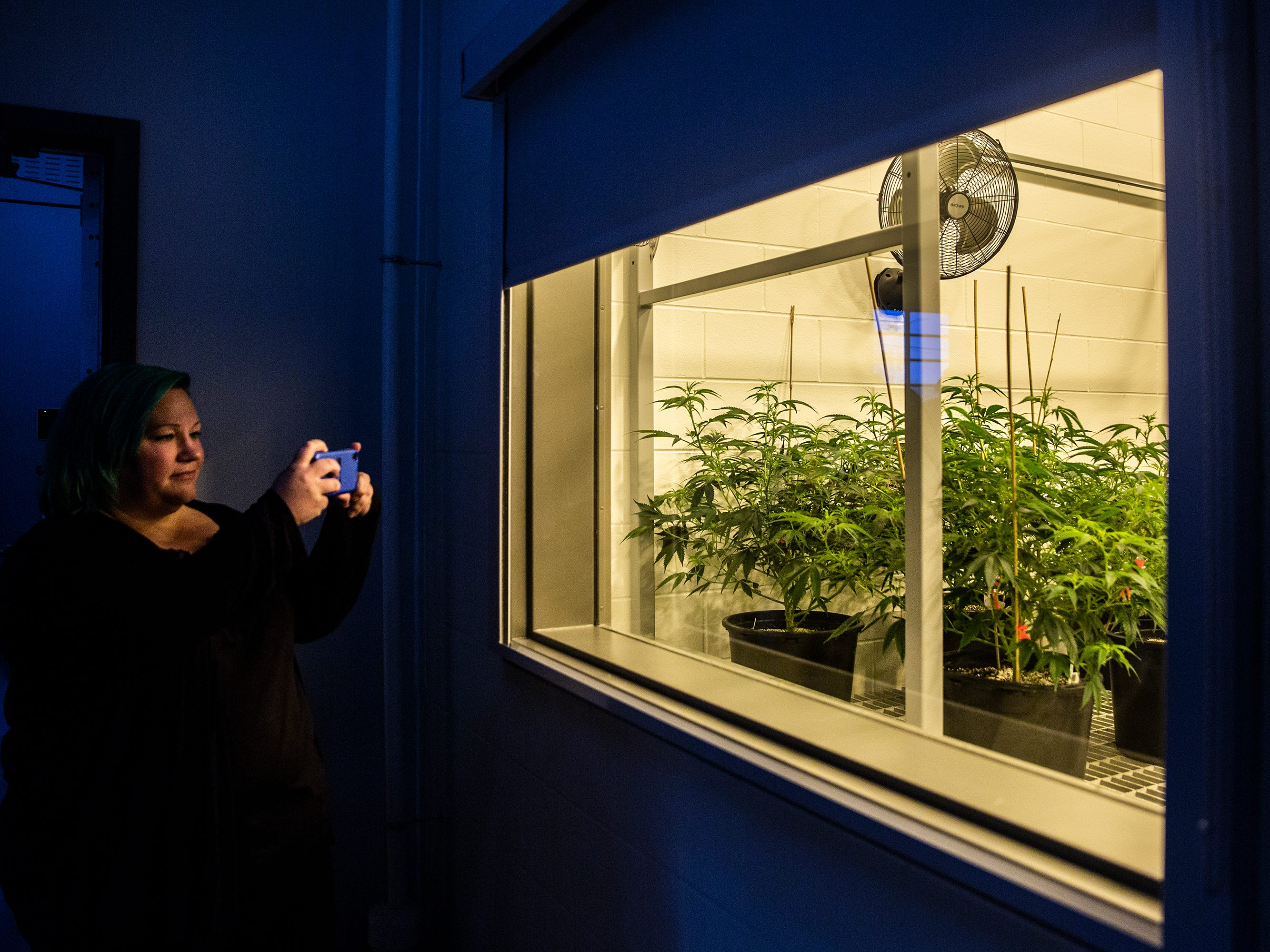 Erin Bollman, of Dallas Center, and an advocate for the use of medical-marijuana, takes a photo of one of the growing rooms inside Iowa's first facility for the production of medical-marijuana, MedPharm Iowa, during a ribbon cutting event on Thursday, Nov. 1, 2018, in Des Moines.
