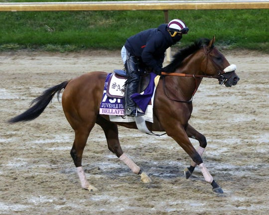 Bellafina gallops at Churchill Downs in preparation for the Breeders' Cup Juvenile Fillies on Nov. 2.