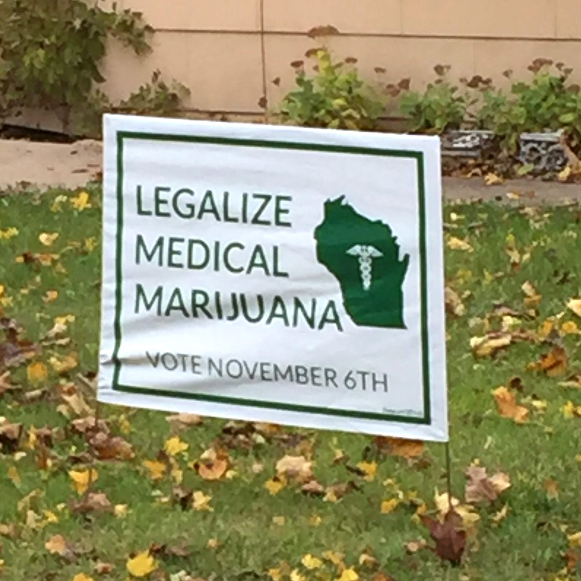 Pro pot: Voters support all marijuana advisory referendums on Tuesday's ballots