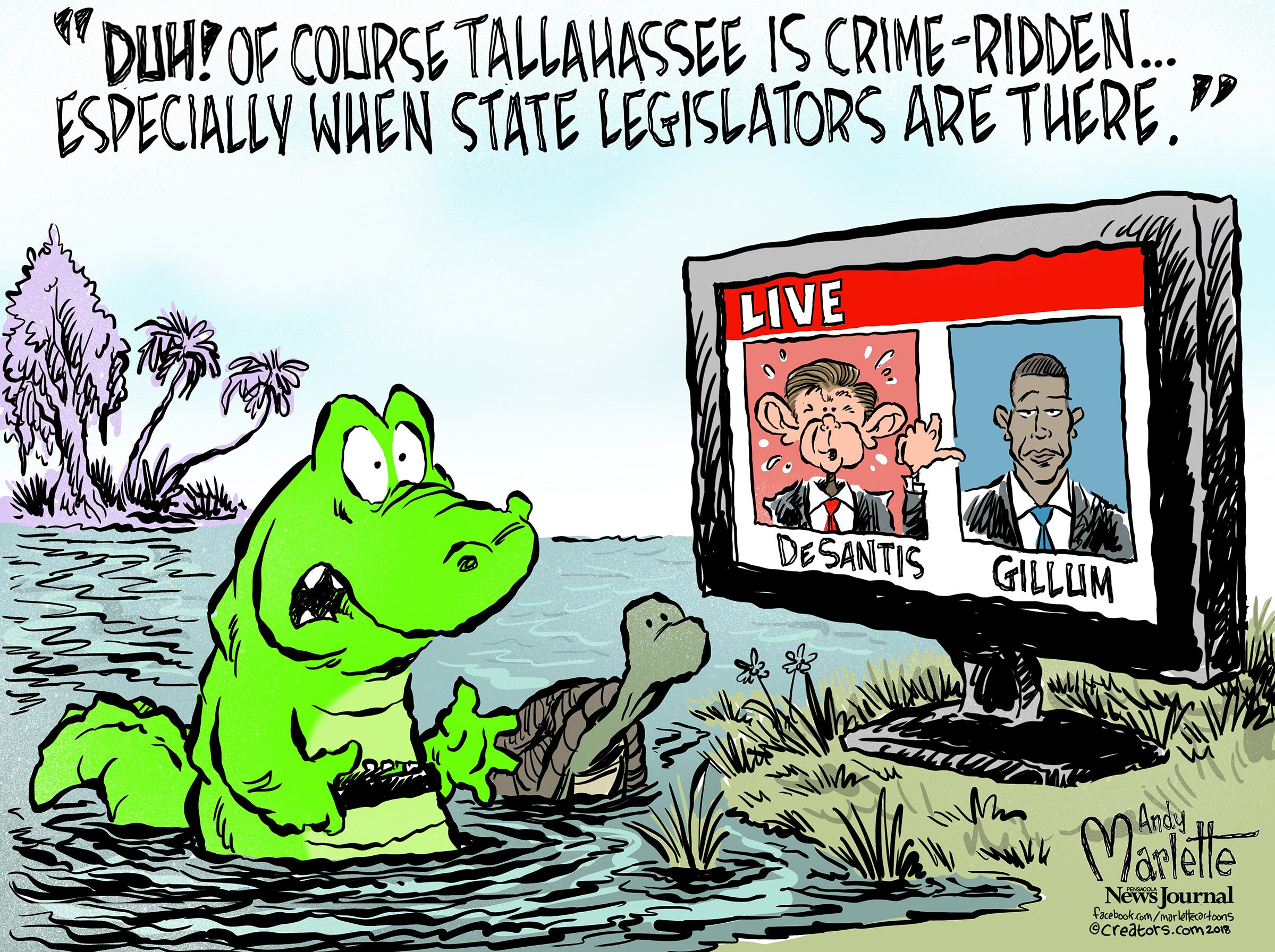 Tooney Loons: The Florida Election