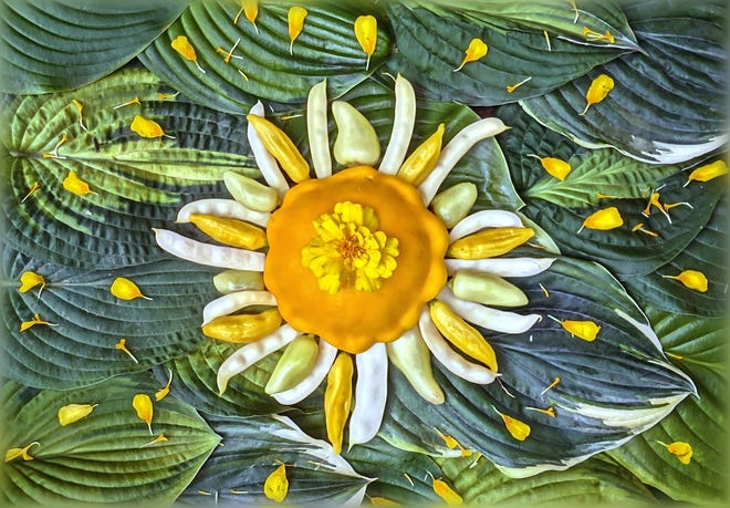 """""""Sol Hot Gogh"""" from the Celestial Vegetable series."""