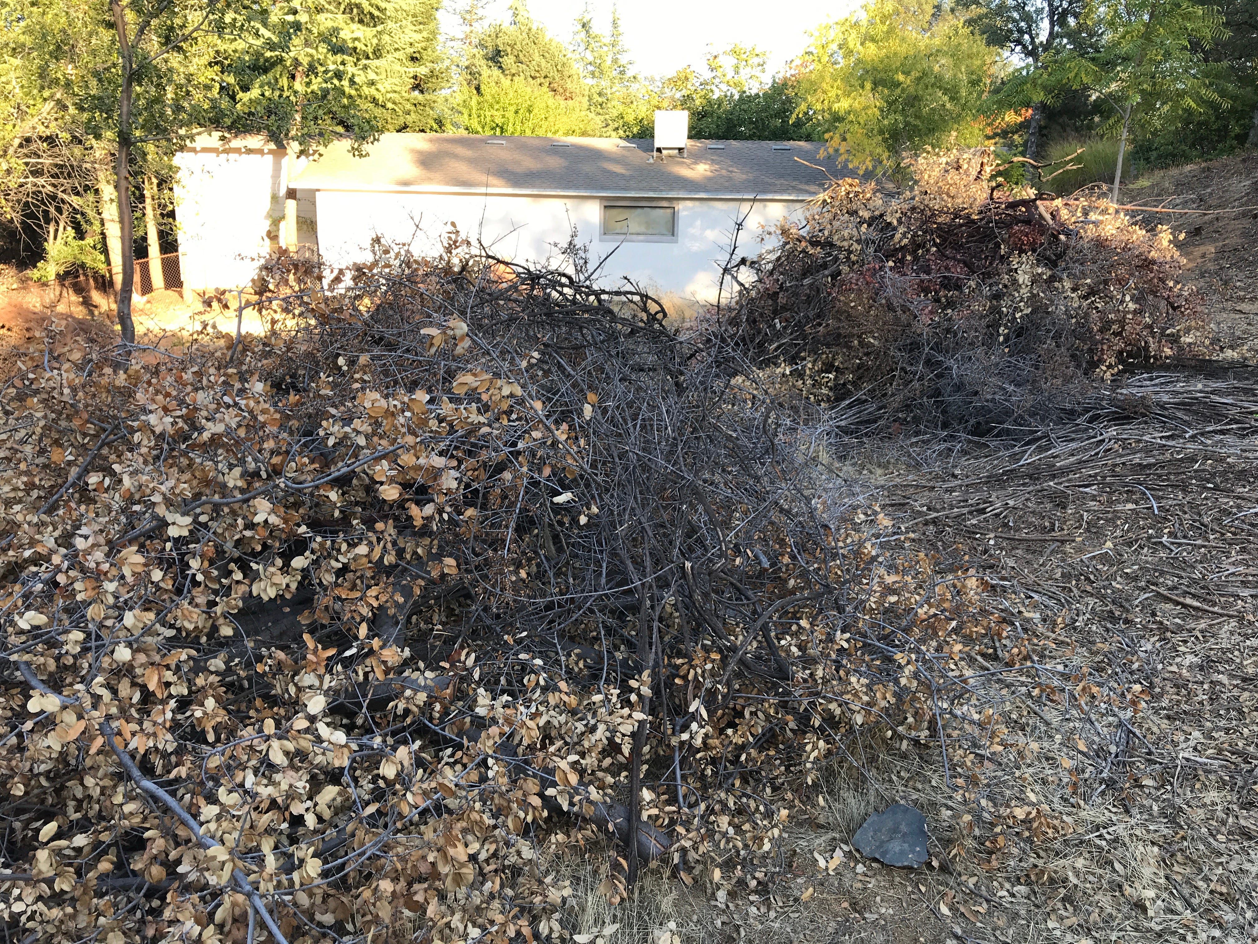 Large piles of brush sit behind a home in the Sunset Terrace area of Redding. An inmate crew trimmed brush from the land where the city has a wastewater easement.