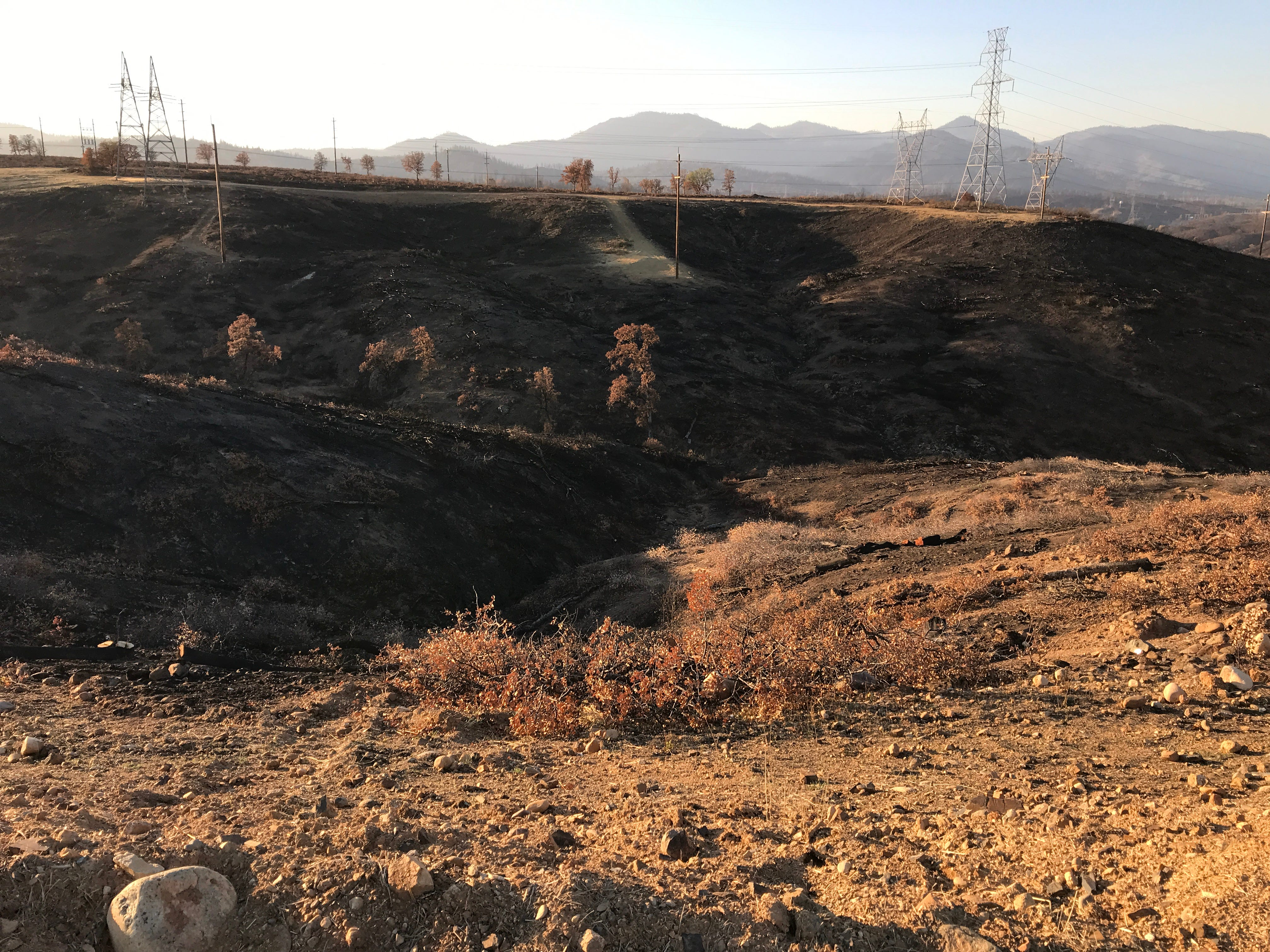 """The Carr Fire burned dense brush, described as a """"Wall of Death,"""" in this ravine west of the Salt Creek Heights subdivision under construction in Redding. The developer had already removed vegetation before the Carr Fire hit. Redding Fire Marshal Craig Wittner called the previously-standing manzanita and other downhill brush as a """"Wall of Death"""" due to the extreme fire hazard it posed."""
