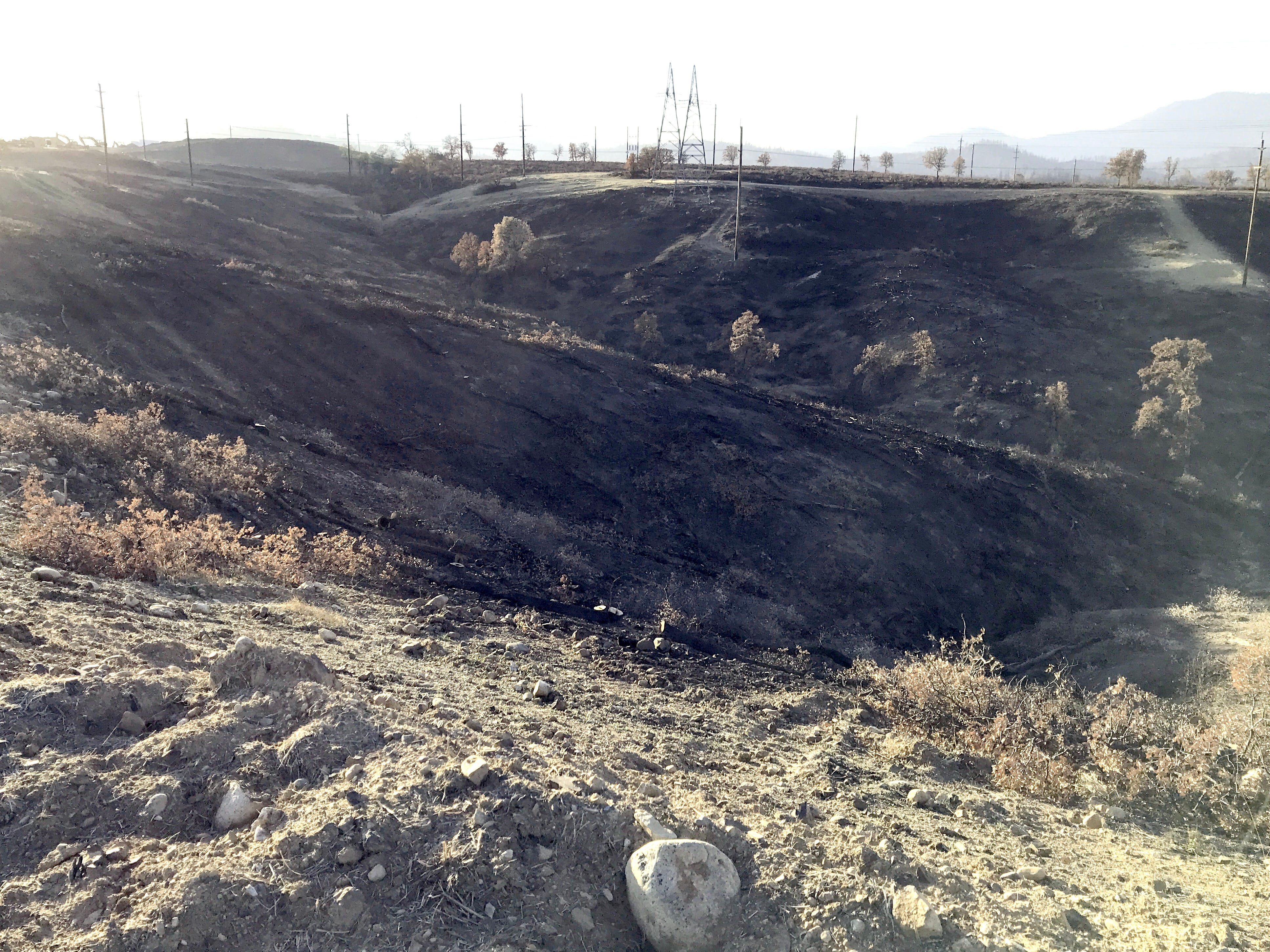 """The Carr Fire burned dense brush in this ravine west of the Salt Creek Heights subdivision under construction in Redding. Before the fire, the developer had removed vegetation near where homes are being built to create a defensible space. Redding Fire Marshal Craig Wittner called the previously-standing manzanita and scrub brush a """"Wall of Death"""" due to the fire hazard it had posed."""