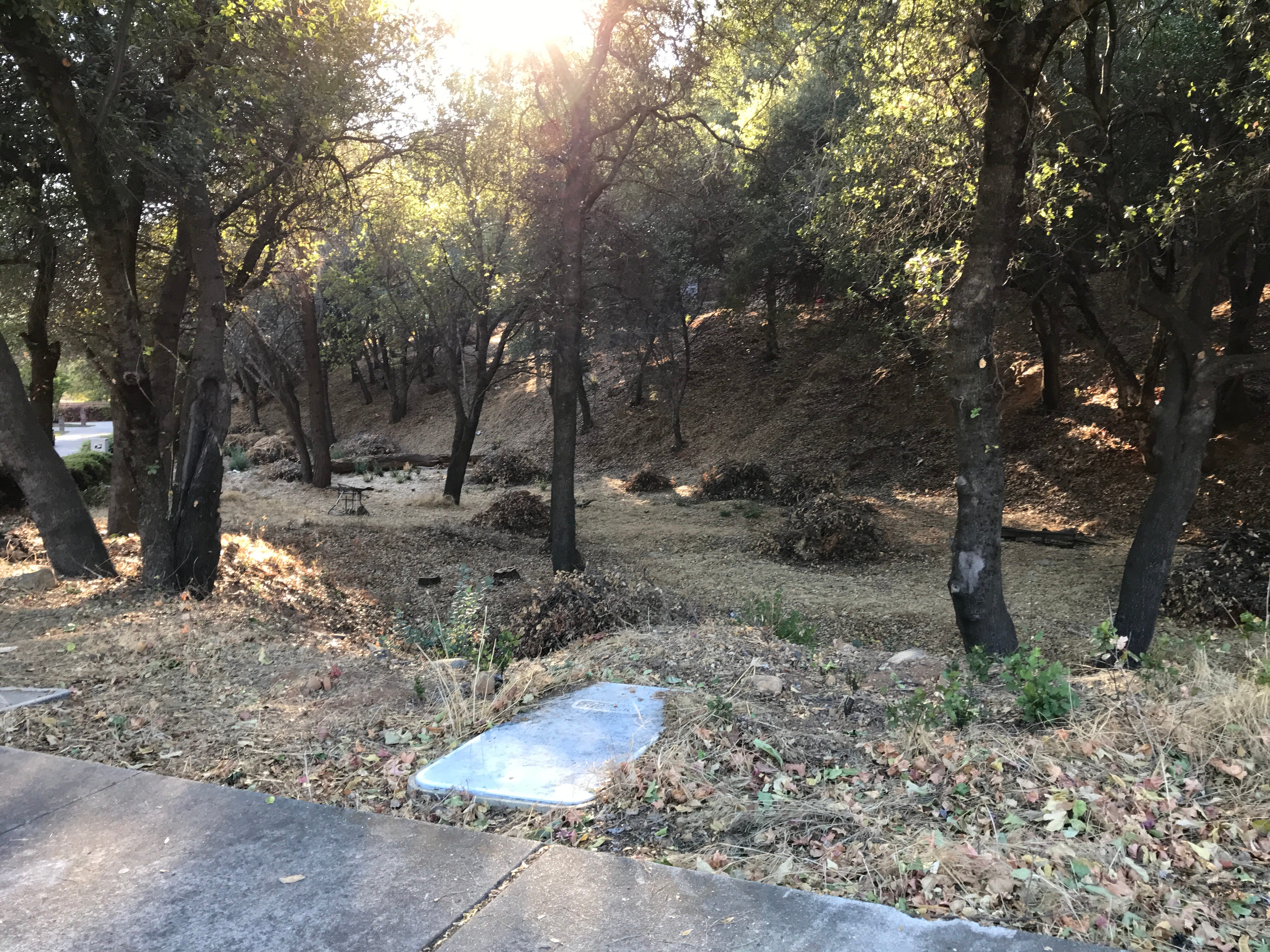 Piles remain in October after crews cut brush at a 4-acre piece of city-owned open space at Bramble Place and Victor Avenue. The plan is to burn the piles once fire season is over.