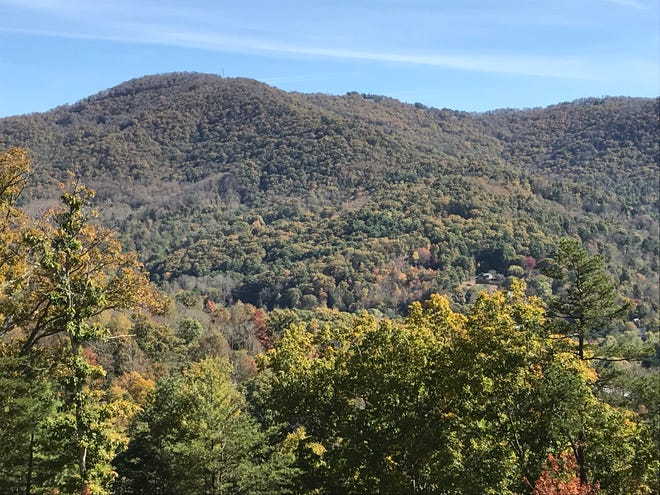 The hillsides in the Beaverdam area were just starting to show a little color in the middle of last week.