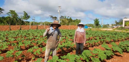 Manhita Farms