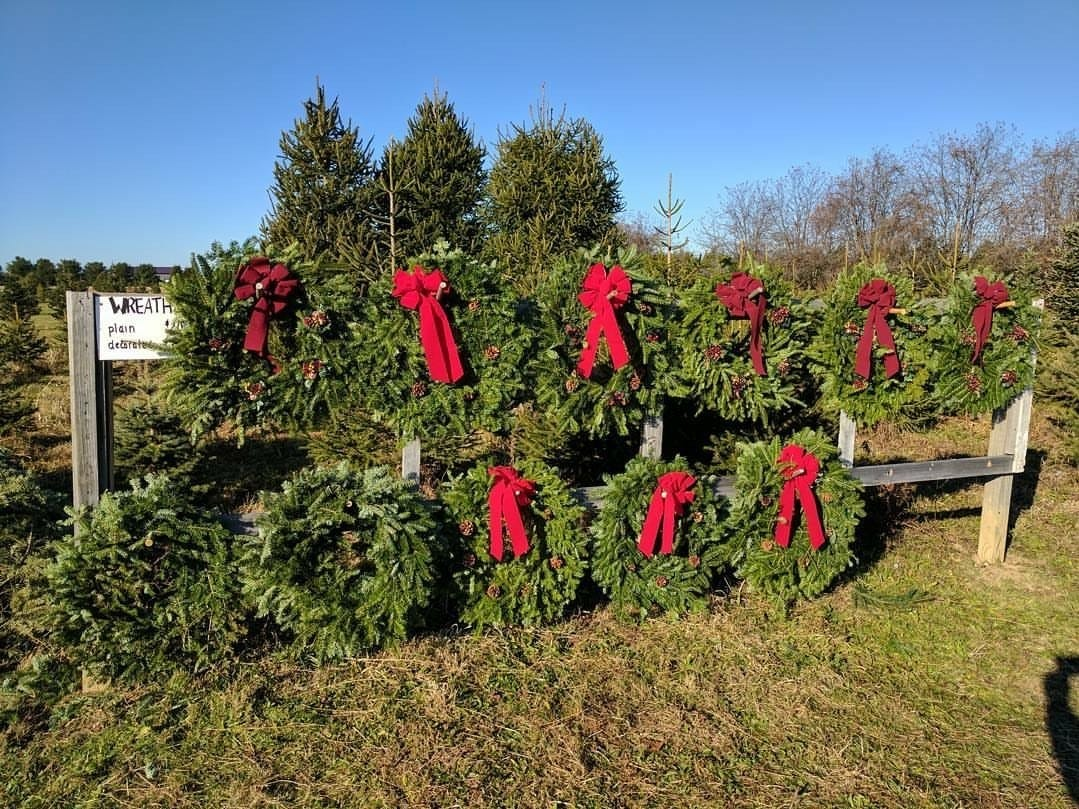 Barclay's Tree Farm, 35 Orchardside Dr., Cranbury. The cut-your-own Christmas tree farm in Middlesex County also sells wreaths and greens.