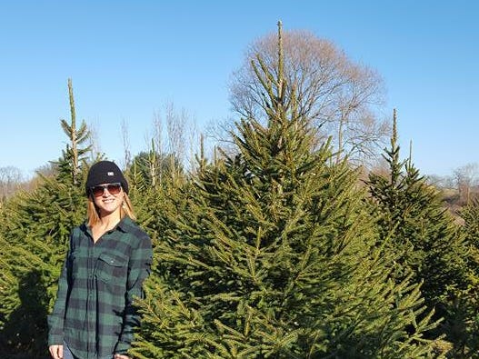 Country Heritage Farm, 129 Plains Rd. in Augusta, a cut-your-own Christmas tree farm with Douglas Fir, Norway Spruce, Blue Spruce and Fraser Fir, along with wreaths and greens. On special days, the Farms' beautiful Newfoundland dogs deliver the trees by wagon.