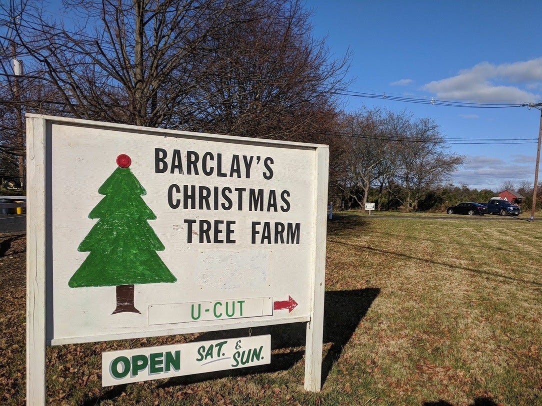 Barclay's Tree Farm, 35 Orchardside Dr., Cranbury. The farm has cut-your-own Blue Spruce, Norway Spruce, Douglas Fir, Concolor Fir and Fraser Fir.