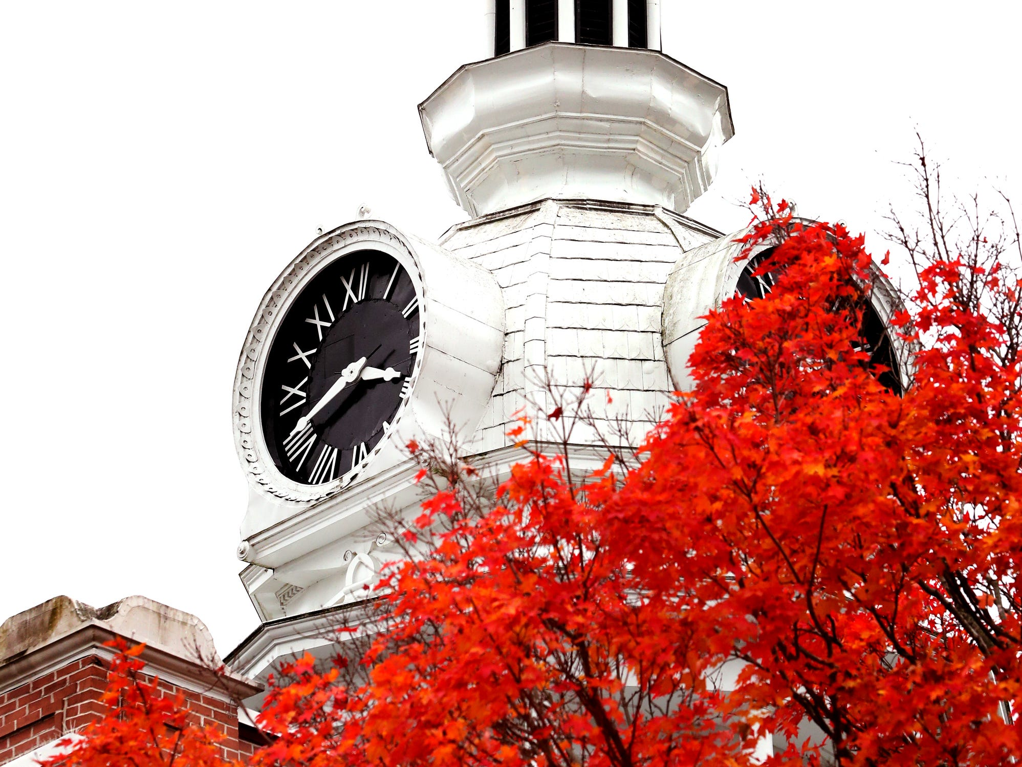 Birds flock to the to top of the cupola of the Rutherford County Courthouse in Murfreesboro as trees begin to change color and fall from their branches on the first day of November around the Murfreesboro Public Square on Thursday, Nov. 1, 2018.