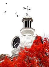 Take a virtual tour of the bright colors of fall in the heart of Murfreesboro