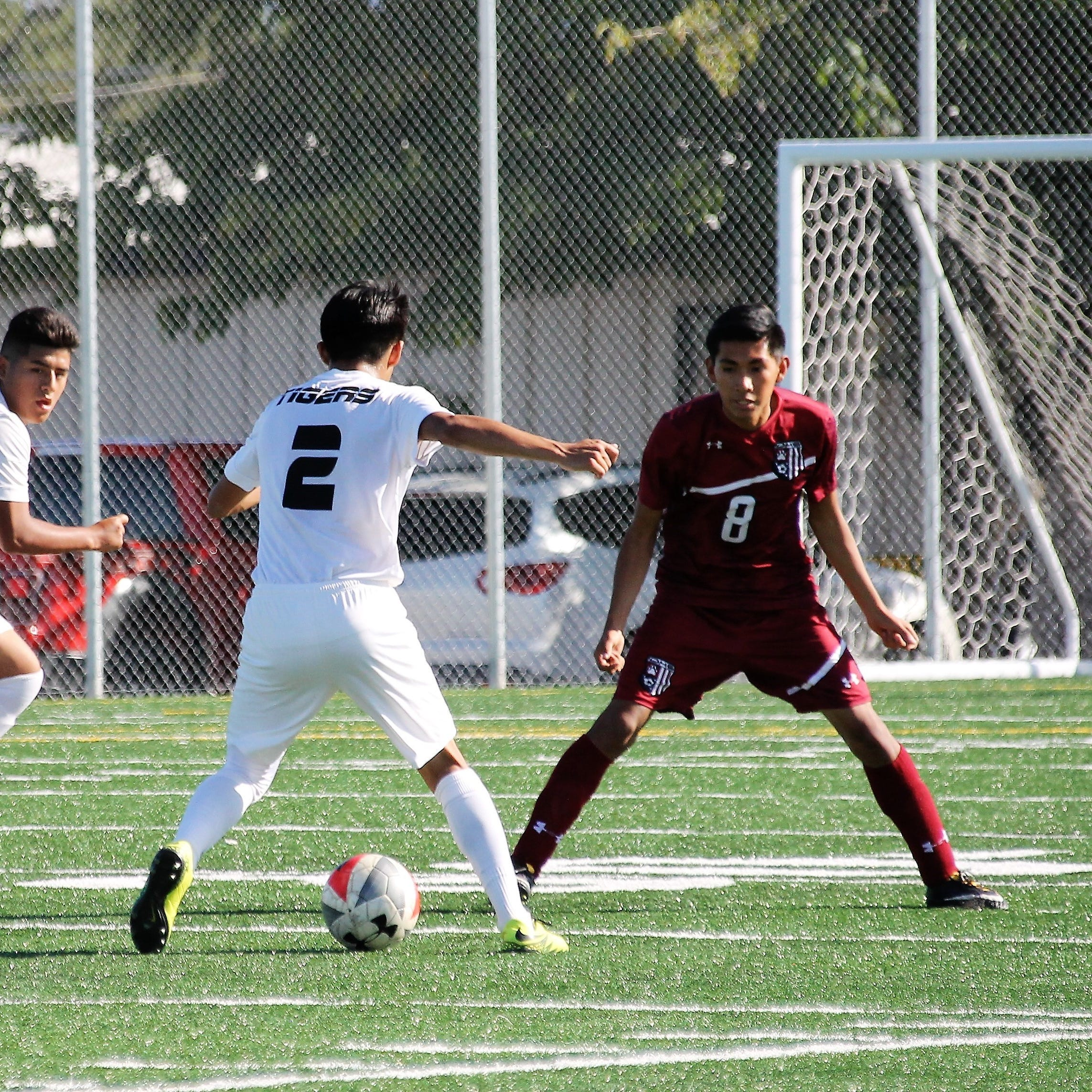 Tiger boys end regular soccer season on high note, head to playoffs