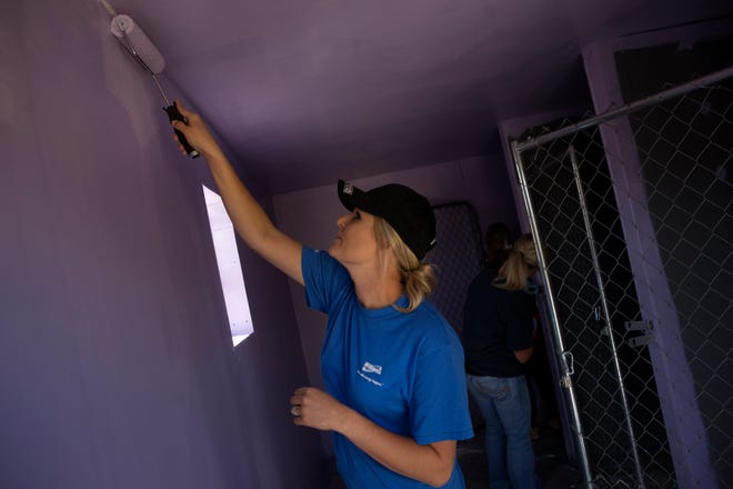 Charmaine Martine of the Williams Companies Inc. paints a kennel Oct. 11, 2017, at the Family Crisis Center's Marge's Place in Farmington as part of the San Juan United Way's Day of Caring.