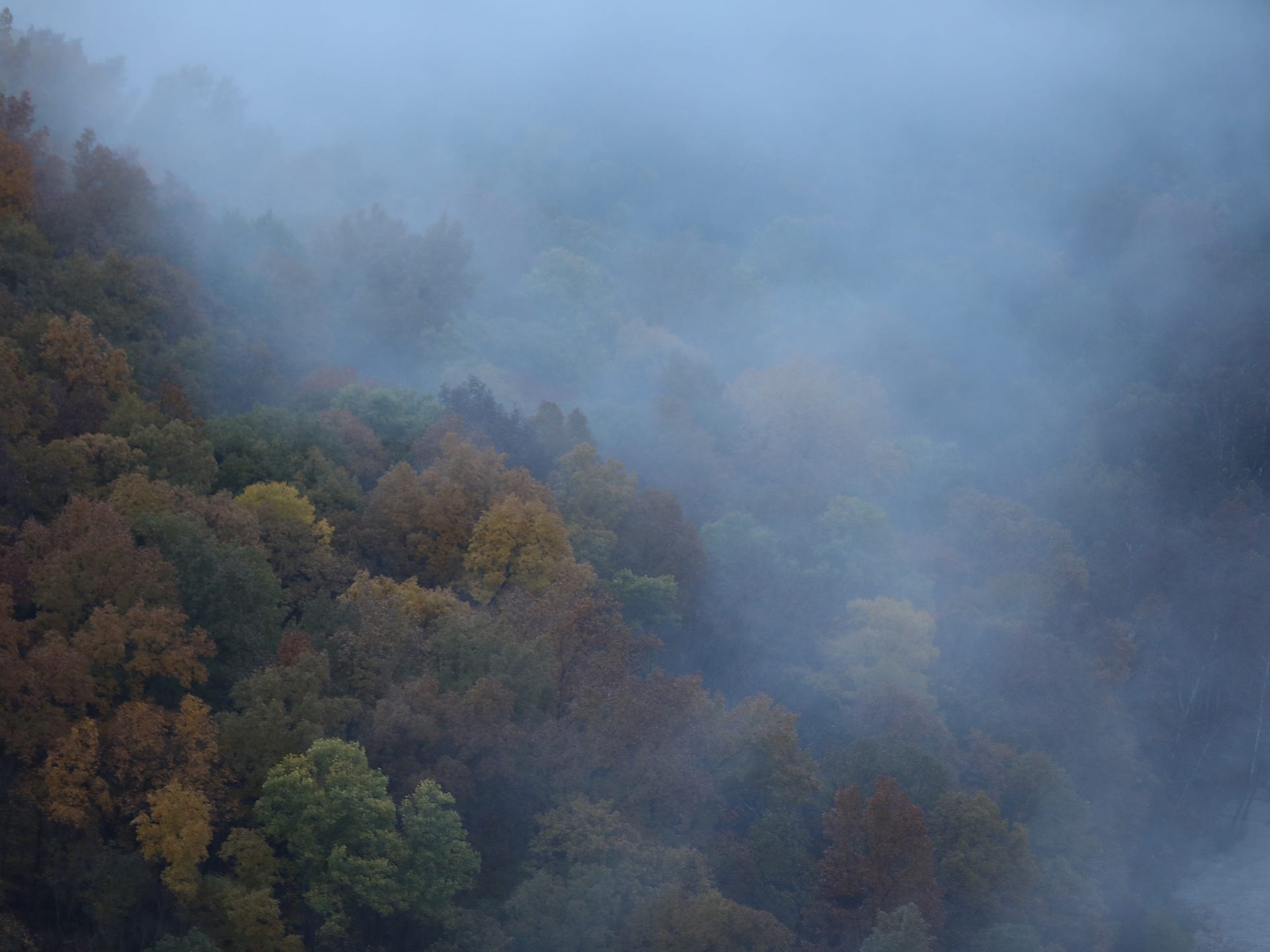 Fog rolls over the trees at the Archery Field Overlook in Letchworth State Park.