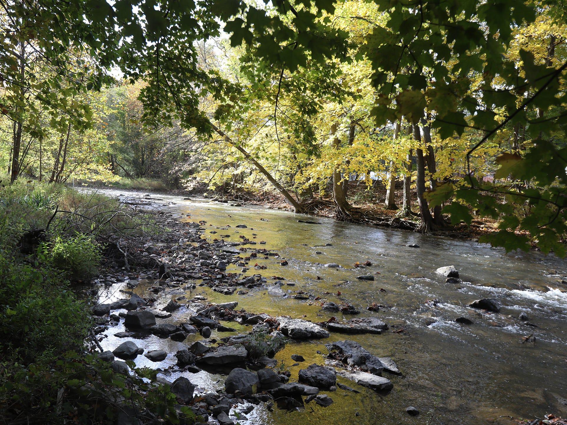 Honeoye Creek in fall.