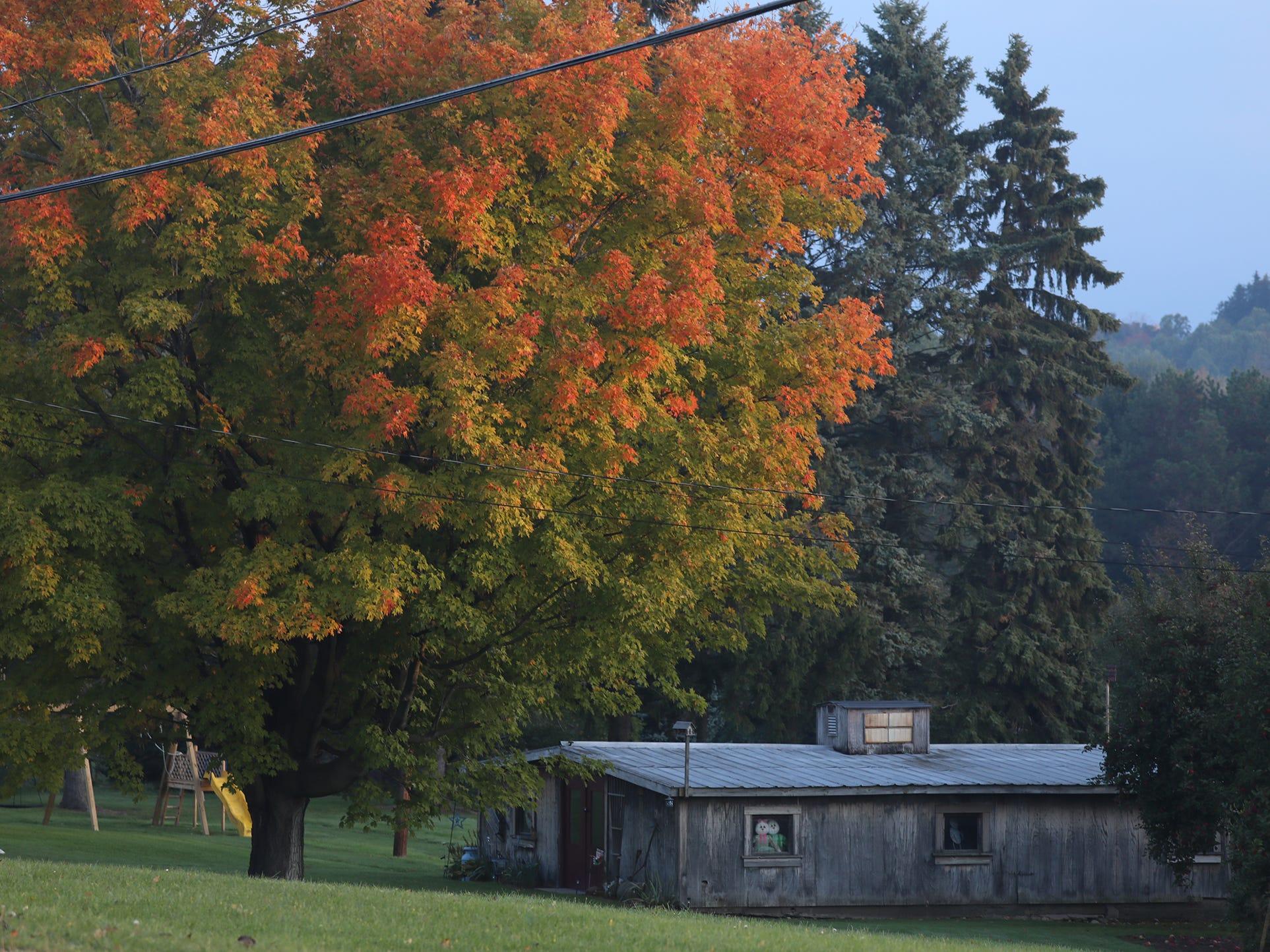 Fall colors in Sodus.