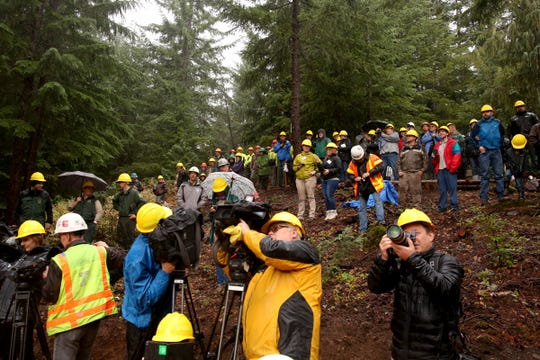 Media and onlookers watch the harvest of the U.S. Capitol Christmas Tree in the Willamette National Forest in Oregon on Friday, Nov. 2, 2018.