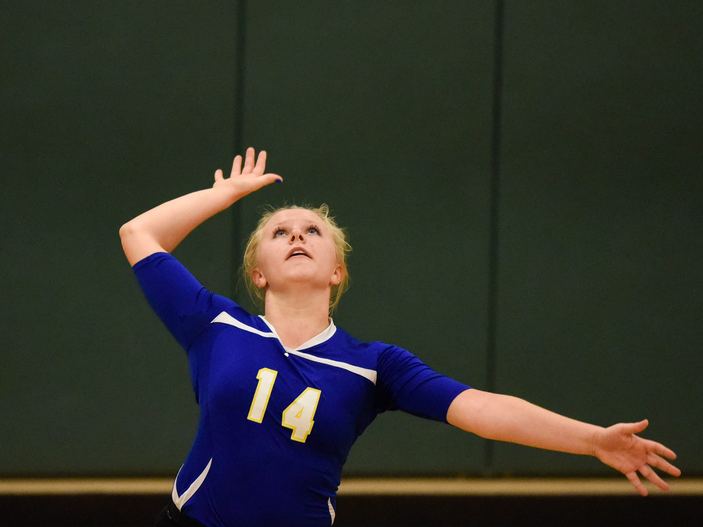 Liz Hamak serves for Cathedral during the Section 6-2A volleyball semifinals Thursday, Nov. 1, at Sauk Rapids-Rice High School.