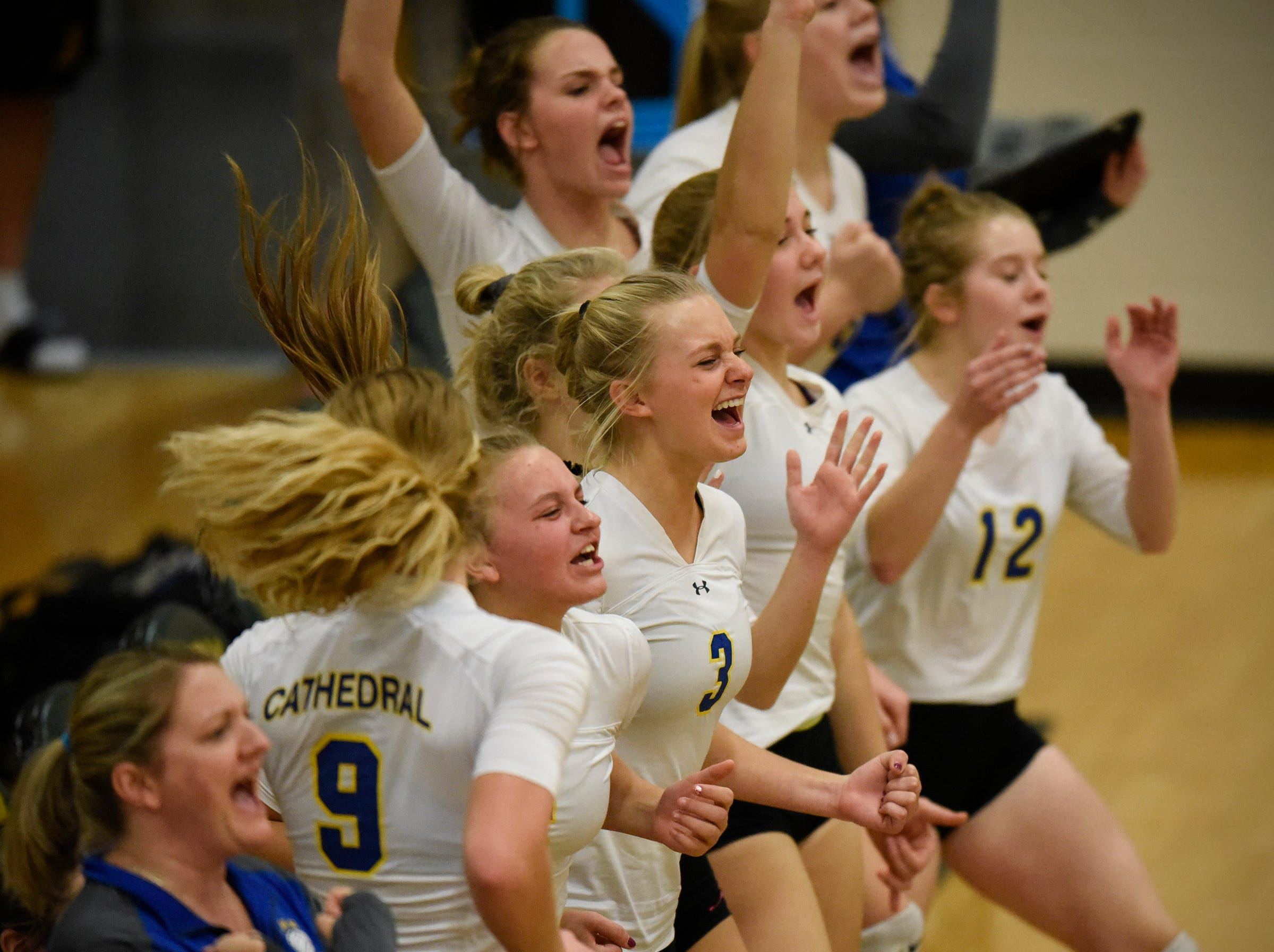 Cathedral players celebrate a point during the Section 6-2A volleyball semifinals Thursday, Nov. 1, at Sauk Rapids-Rice High School.