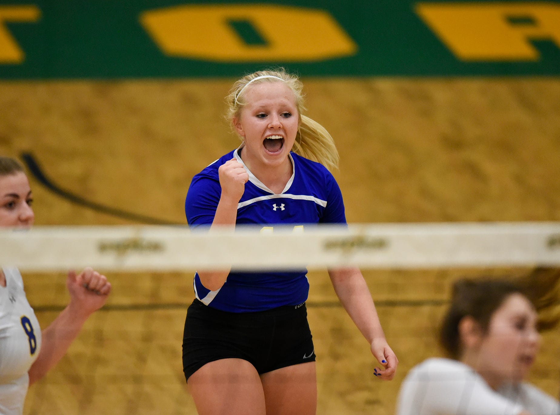 Cathedral's Liz Hamak celebrates a point for her team during the Section 6-2A volleyball semifinals Thursday, Nov. 1, at Sauk Rapids-Rice High School.