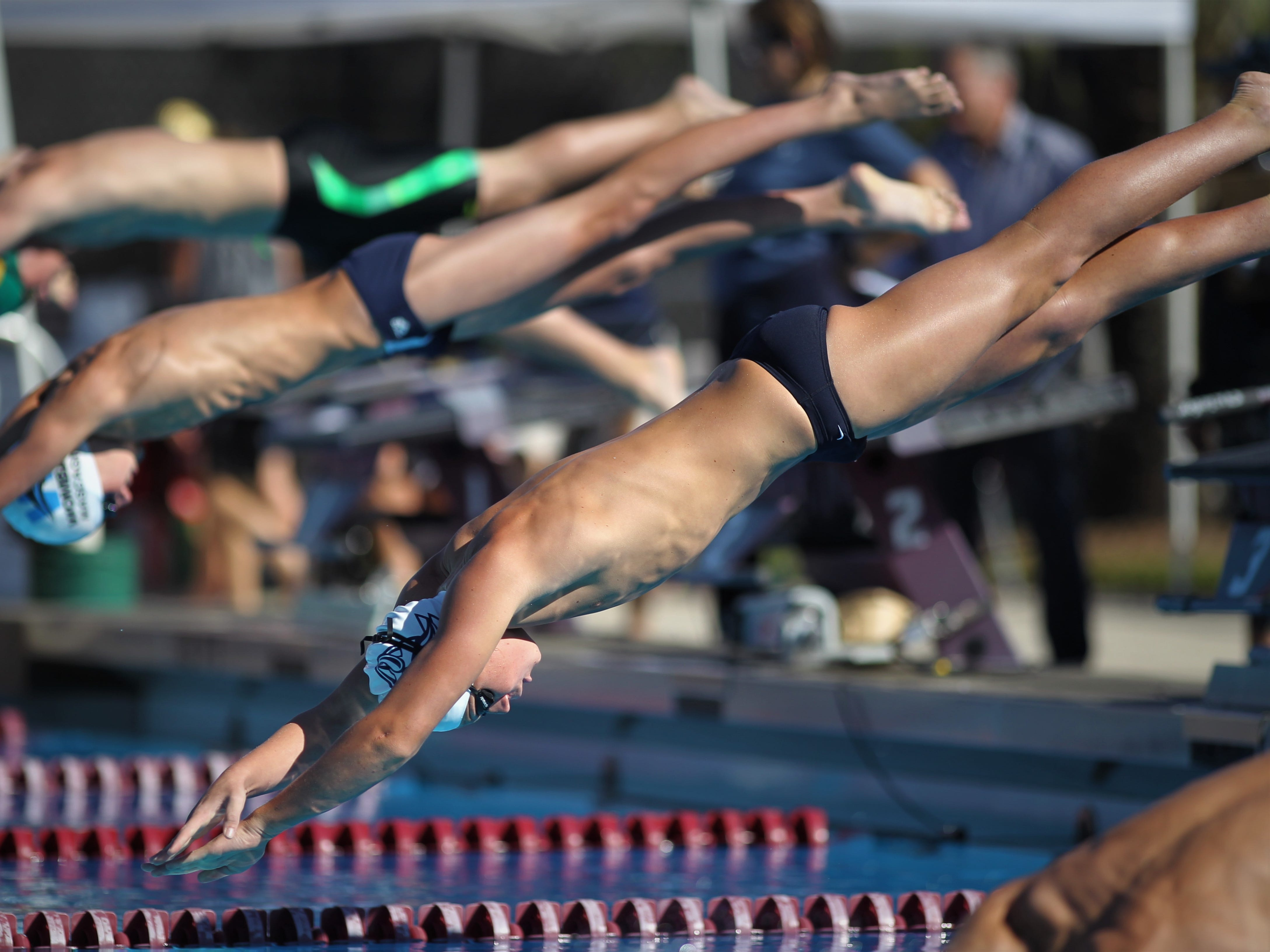 Maclay's Stuart Higdon dives into the pool for an event swim during the District 1-1A swimming and diving meet at Morcom Aquatics Center on Wednesday, Oct. 21, 2018.