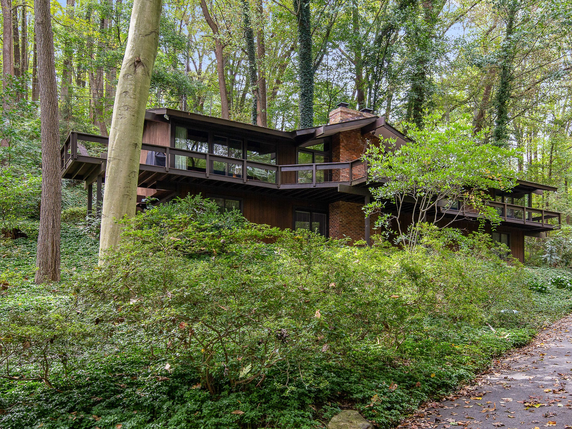 The mid-century modern home at 110 Thissell in Greenville is sited in mature trees and shrubs.