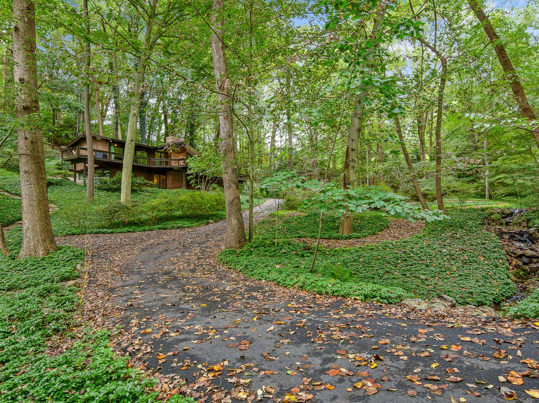 This mid-century modern home at 110 Thissell in Greenville offers spectacular woodland views.
