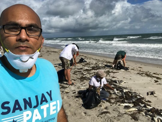 Sanjay Patel, a Democrat challenger to Rep. Bill Posey, helps clean up dead fish from a recent red tide in Brevard County.