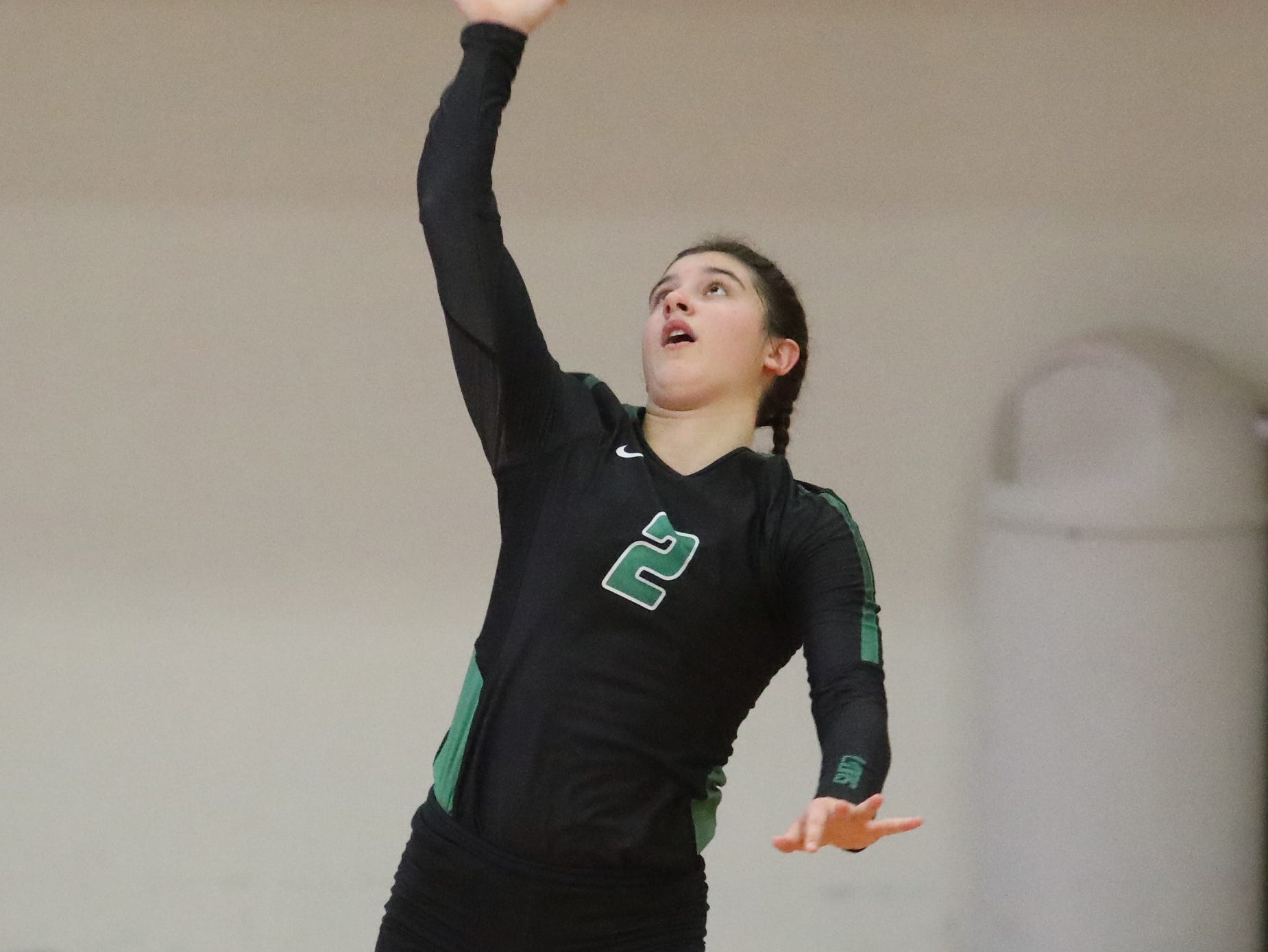 Ursuline player Peyton Breissinger serves during the Lions win the regional championship match against Mount Notre Dame. Saturday, Nov. 3,2018.