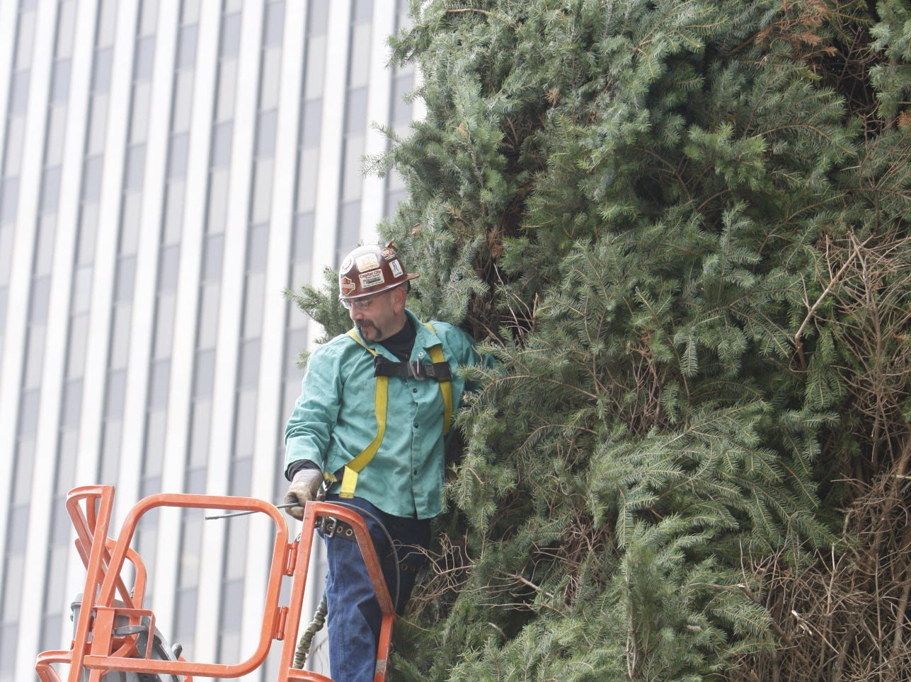 2008: Doug McHenry hooks a cable into place as employee of Davey Large Tree Moving and Enerfab maneuvers the 60-foot tall Christmas tree into place on Cincinnati's Fountain Square on Sunday, Nov. 9.