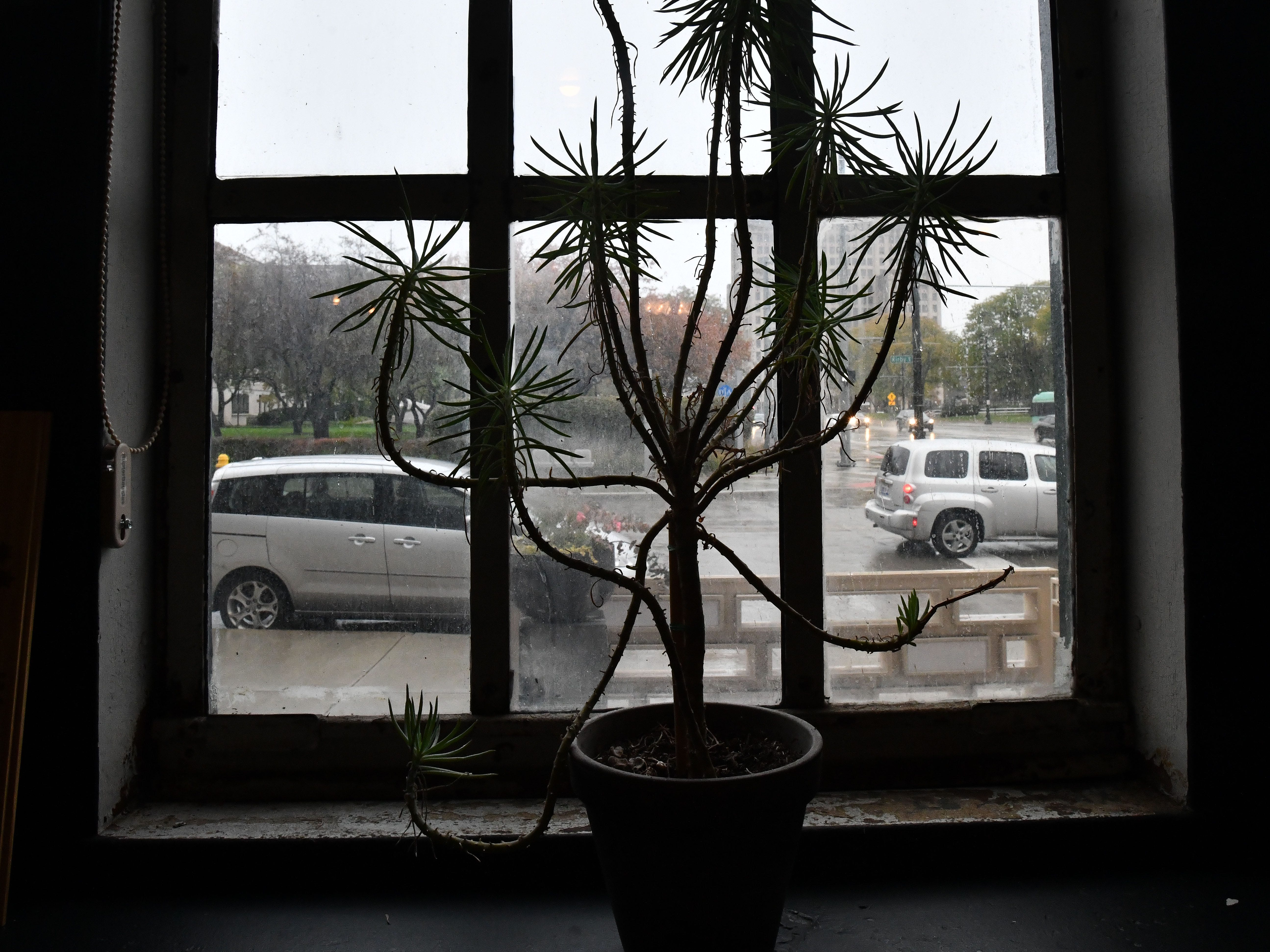 A window looking out onto Kirby and Woodward.
