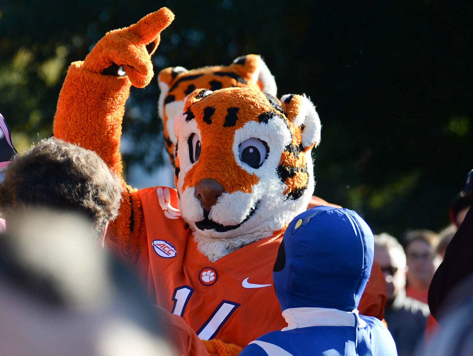 Clemson fans arrive early, setting up tailgate and watching Tiger Walk near changing colors of fall before the game in Memorial Stadium on Saturday, November 3, 2018.