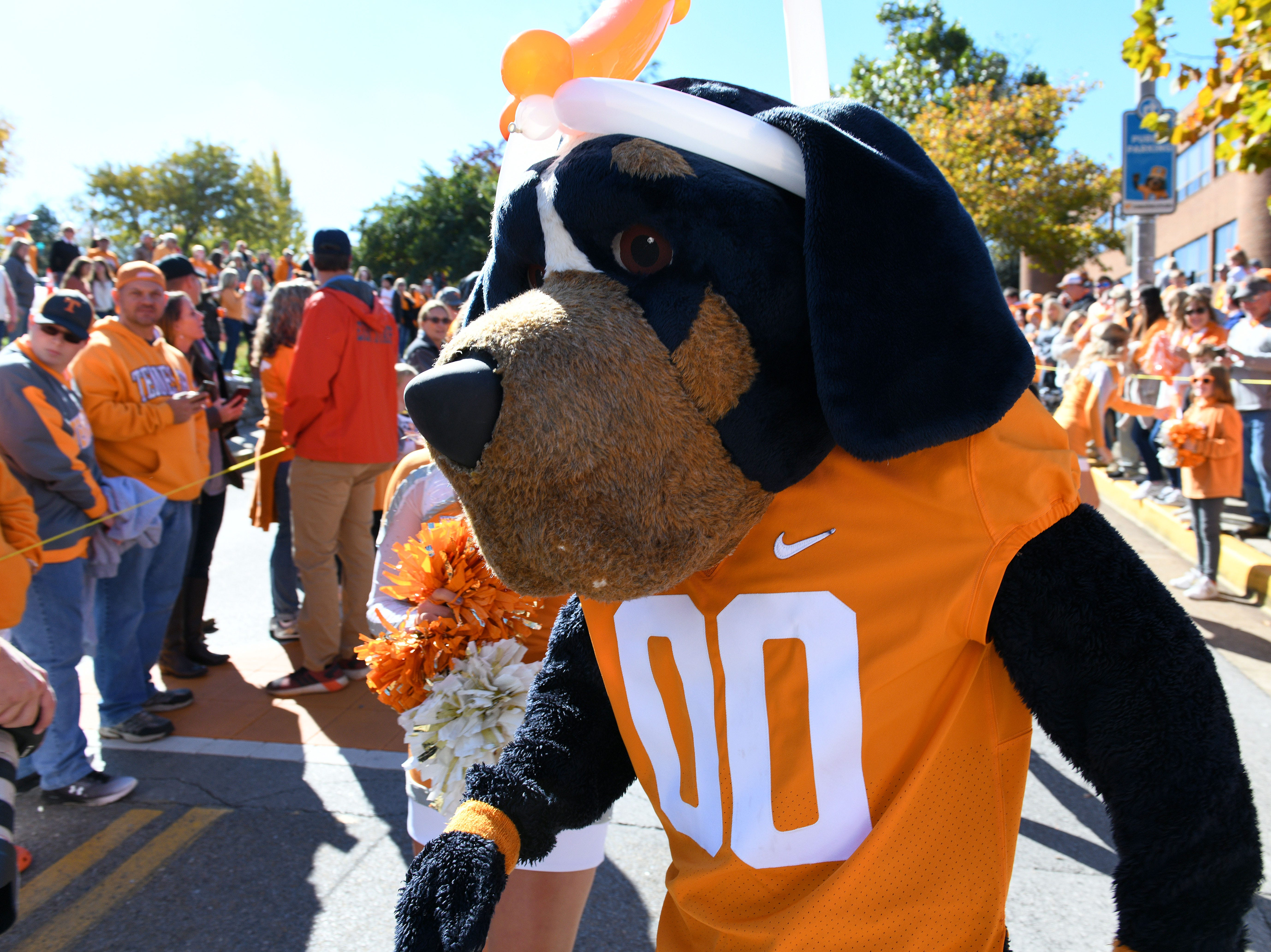 Smokey during pregame activities before the game against Charlotte Saturday, November 3, 2018 at Neyland Stadium in Knoxville, Tenn.