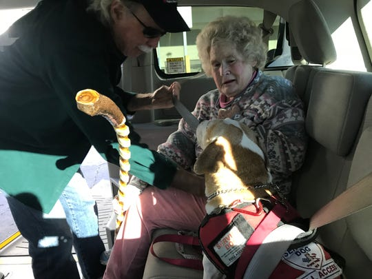 Jill McKenzie talks to her service dog, Ollie, as Volunteer Assisted Transportation driver James Malia buckles both of them into a CAC van. McKenzie, who carves spiral walking sticks from sumac wood, depends on the program to take her to medical appointments and her weekly carvers' group.