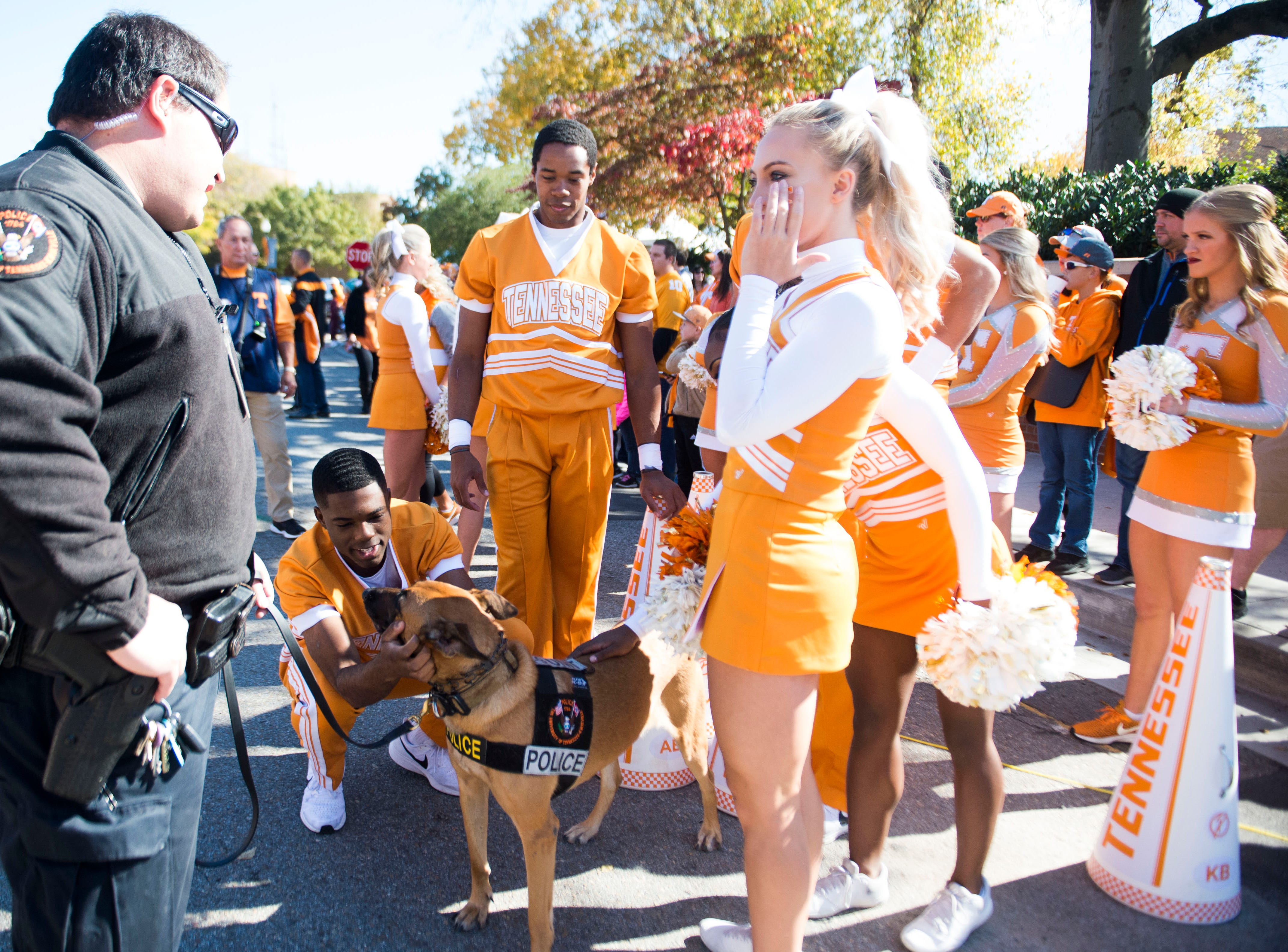 UT cheerleaders greet a police dog before the homecoming game between Tennessee and Charlotte outside of Neyland Stadium Saturday, Nov. 3, 2018.