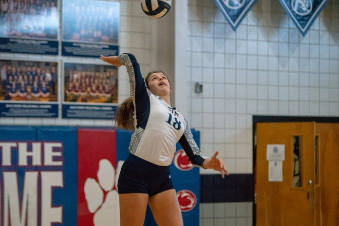 STM's Meredyth Howard serves the ball as the Cougars play in a playoff game against Academy of Our Lady at St. Thomas More on November 3, 2018.