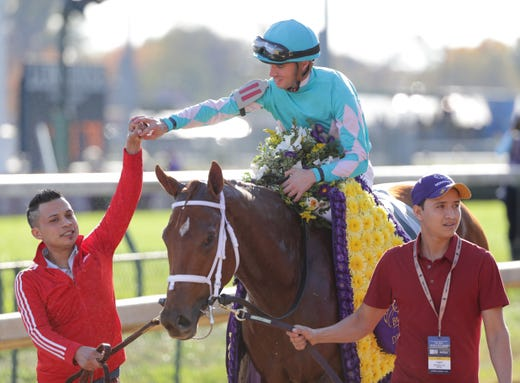 Breeders Cup Post Positions Odds And Entries For All Races