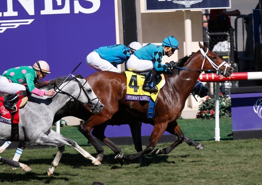 2017 Breeders Cup World Championships At Del Mar Day 2
